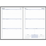 DEBDEN 2022 DAYPLANNER EXECUTIVE EDITION REFILL WEEK TO VIEW