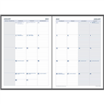 DEBDEN 2022 DAYPLANNER EXECUTIVE EDITION REFILL MONTH TO VIEW